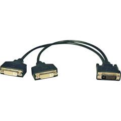 Tripp-Lite P564-001 - 1' DVI Dual Link Splitter Cable